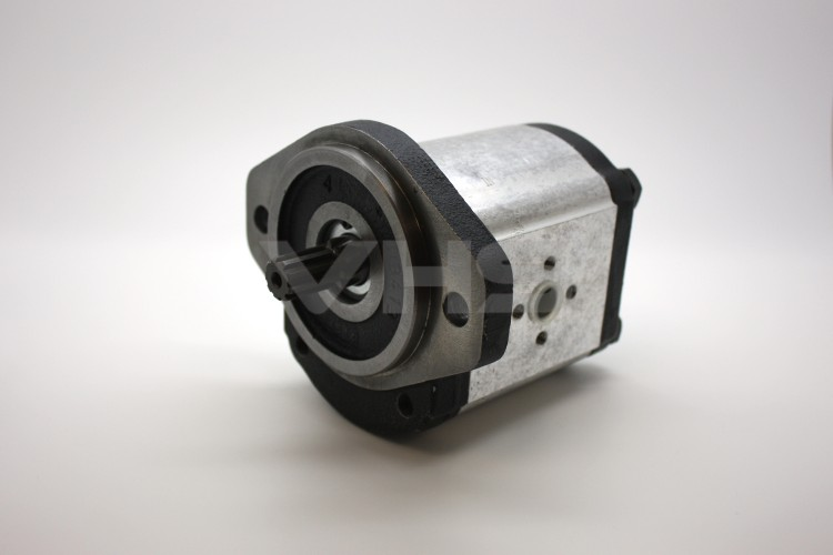 Casappa PLM20 21.14cc Group 2 Gear Motor Flanged Ports