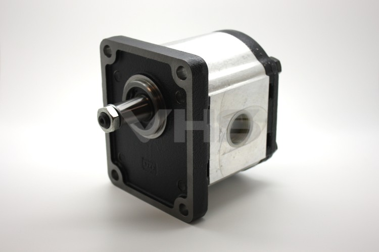 Casappa PLP30 43.98cc Group 3 Gear Pump BSP Ports