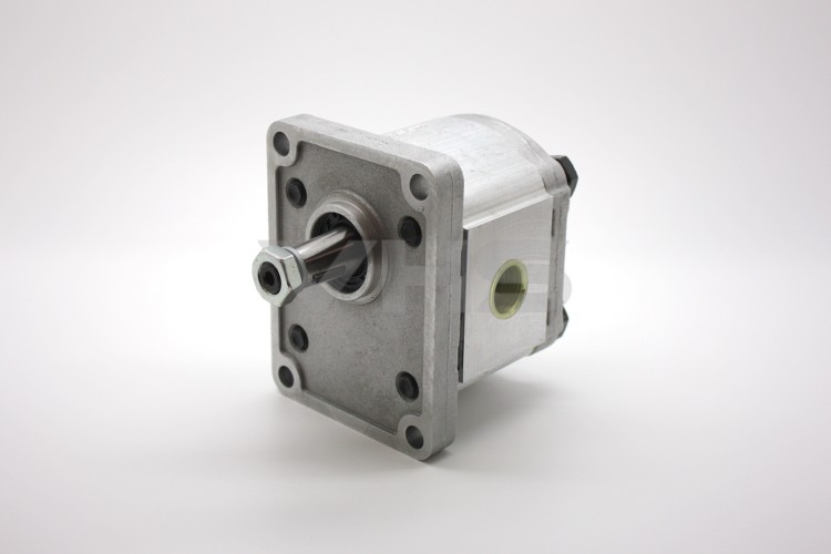 Casappa PLP20 6cc Group 2 Gear Pump BSP Ports